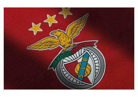Procuro companhia para ver o jogo do Benfica Vs Paok